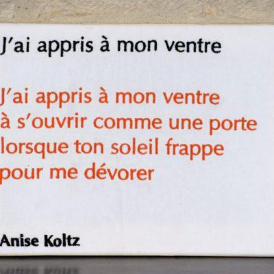 Anise Koltz - 60 X50 CM
