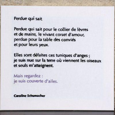 Perdue qui sait - Caroline Schumacher - 60 X 60 CM