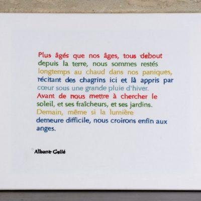 Andrée Chedid par Franck Sorbier